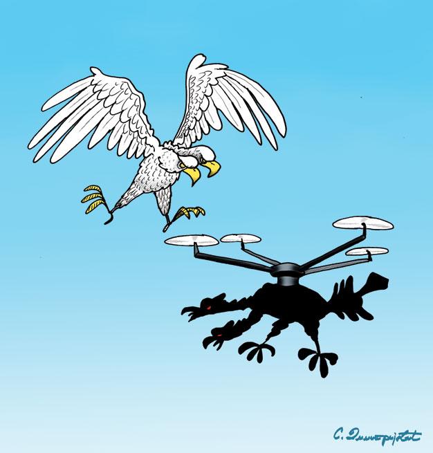 Sukob orlova